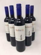 Pacifico Sur Merlot 6 x 75cl product image
